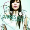 A SKYLIT DRIVE / wires and the concept of breathing (お取り寄せ商品)