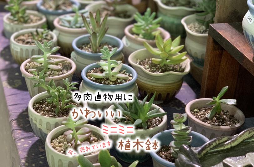 益子焼 通販 洗面ボウル 手洗い鉢 和食器